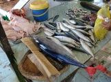 ヘネラル・マカルトゥールの魚市場(Fish Market in General Mac'Arthor Town)